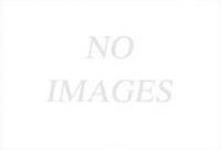 Áo Thun Mansion